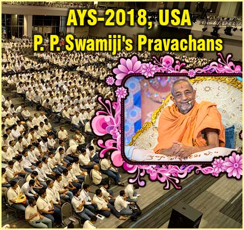 Atmiya Youth Shibir-USA 2018 Swamiji